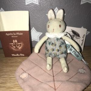 Petit lapin Pousse